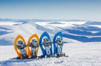 Snow shoeing tours