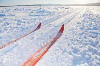 Ski touring day trips