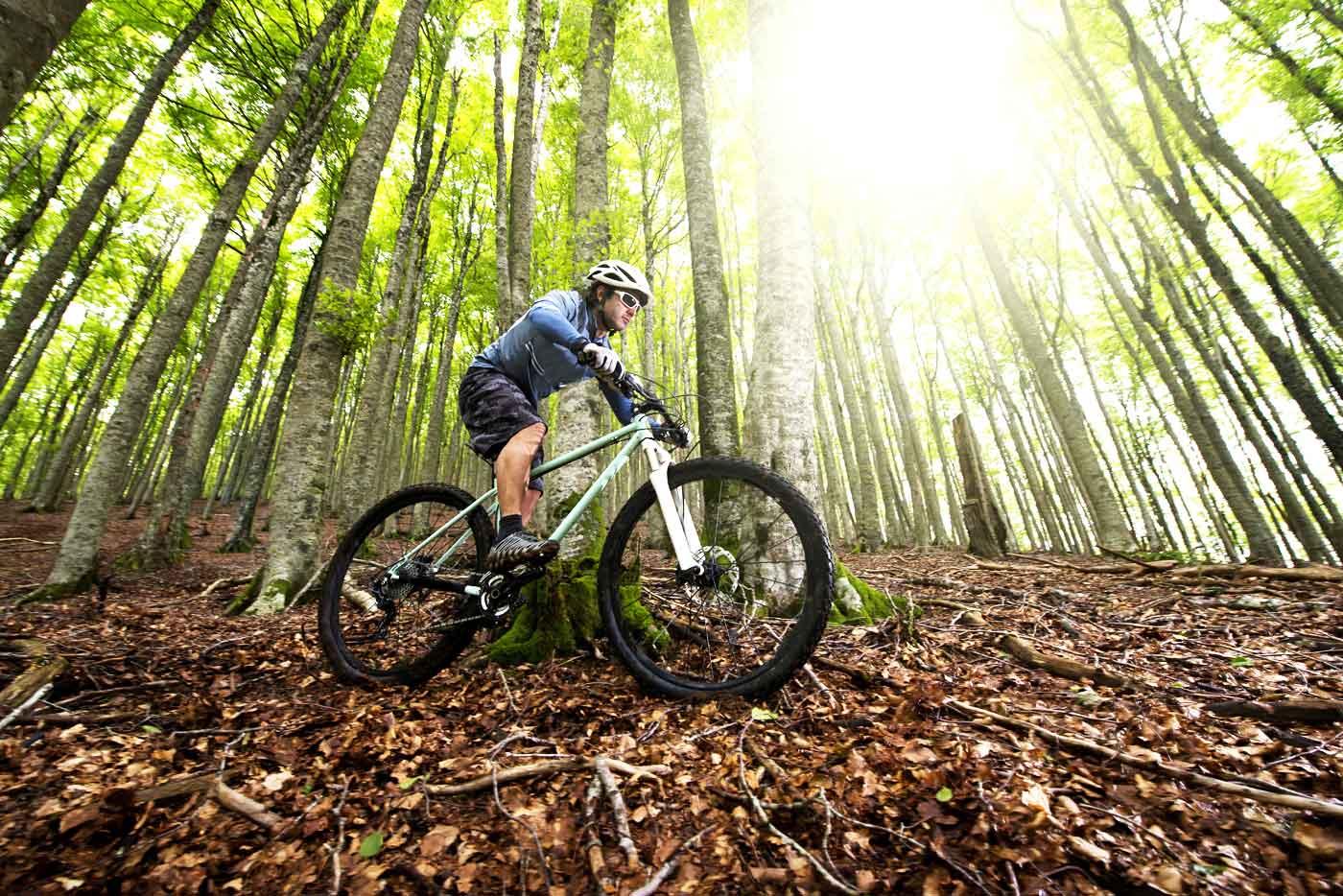 Book downhill biking in Bulgaria